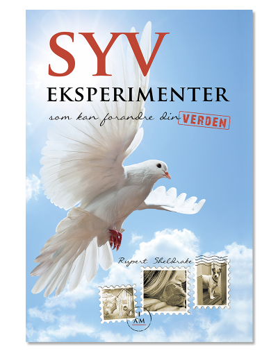 Syv-eksperimenter